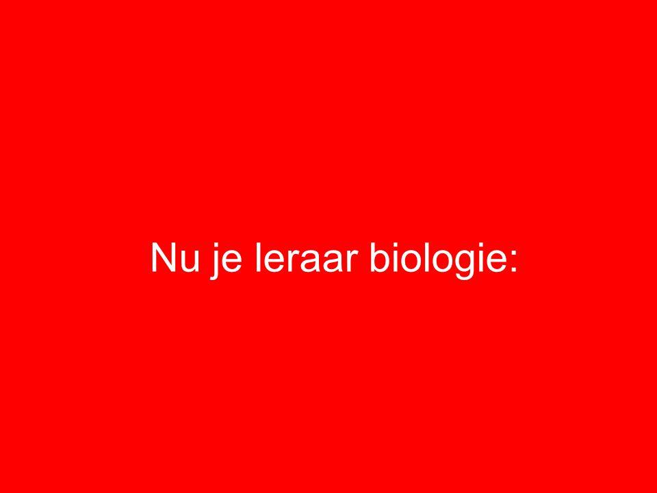 Nu je leraar biologie: