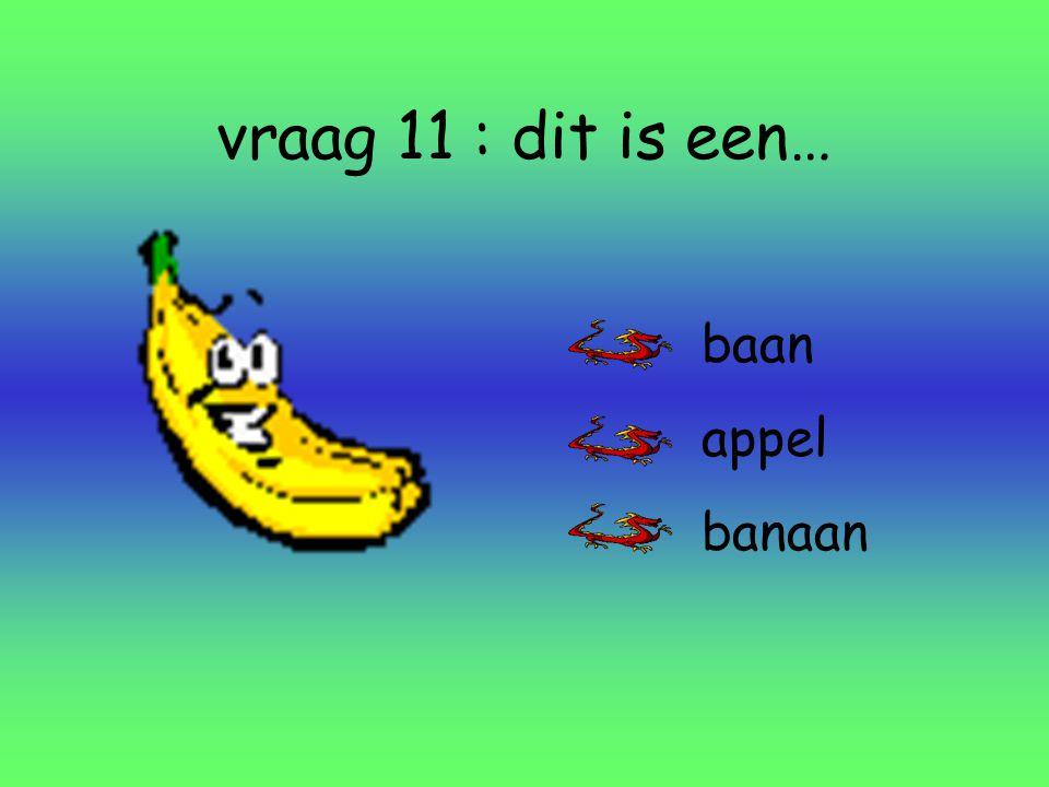vraag 11 : dit is een… baan appel banaan