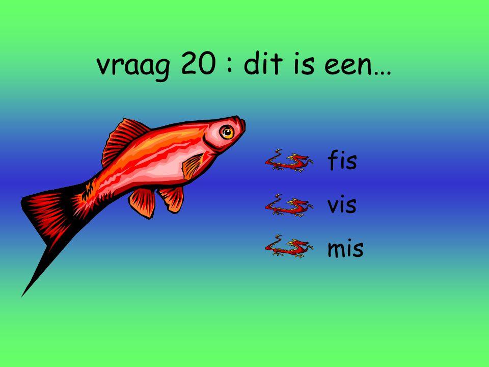 vraag 20 : dit is een… fis vis mis