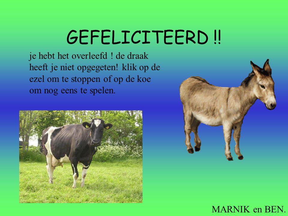 GEFELICITEERD !! je hebt het overleefd ! de draak heeft je niet opgegeten! klik op de ezel om te stoppen of op de koe om nog eens te spelen.