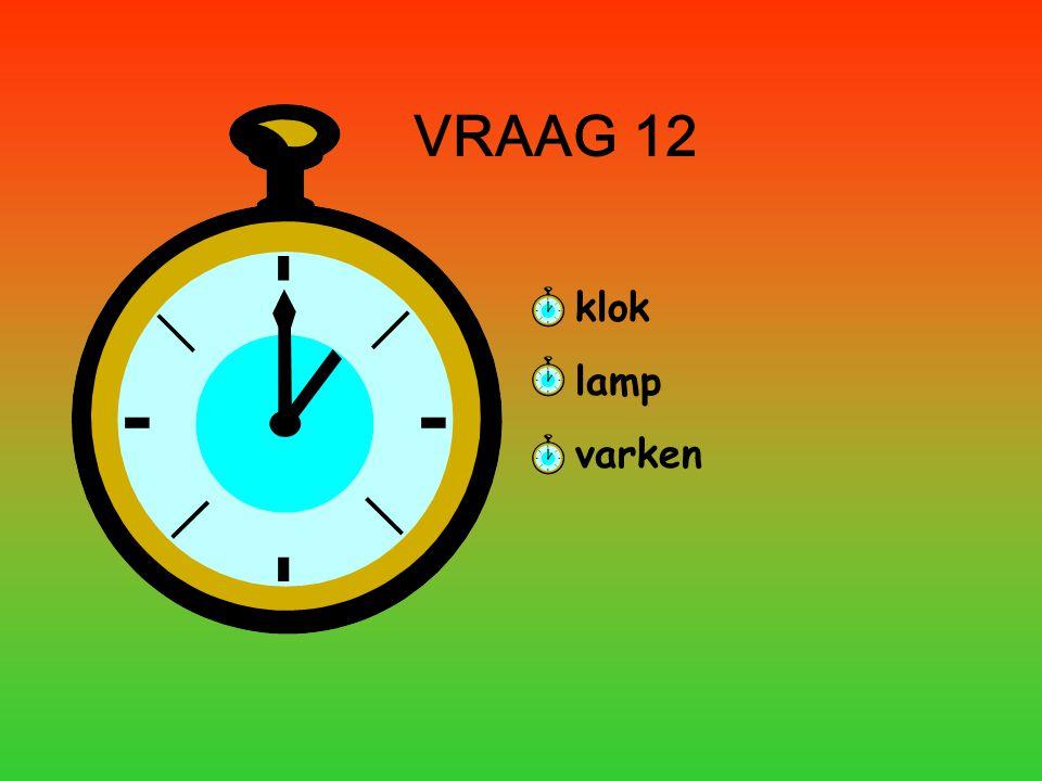 VRAAG 12 klok lamp varken