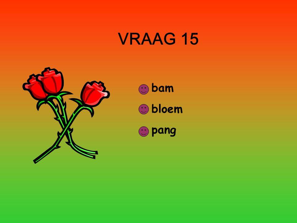 VRAAG 15 bam bloem pang