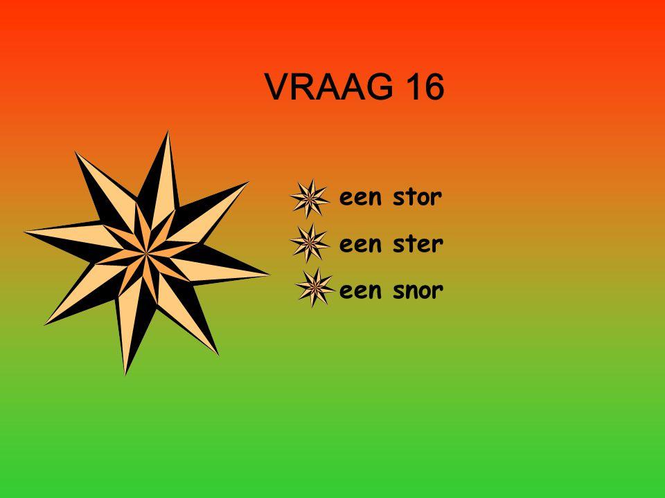 VRAAG 16 een stor een ster een snor