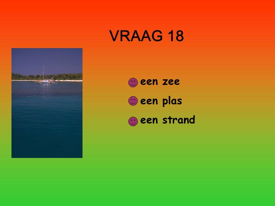 VRAAG 18 een zee een plas een strand