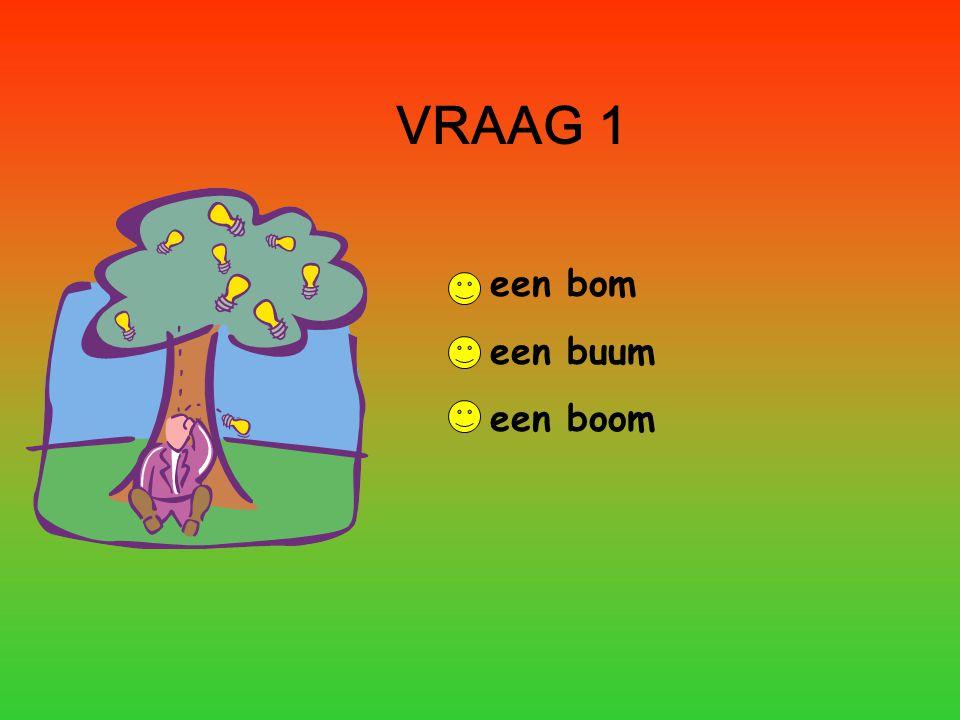 VRAAG 1 een bom een buum een boom
