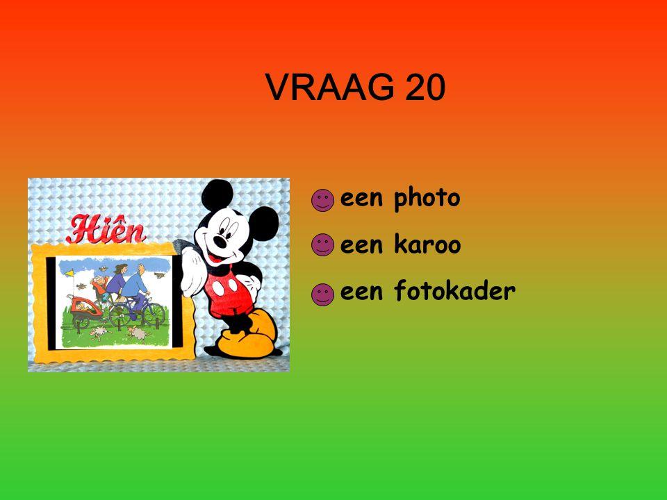 VRAAG 20 een photo een karoo een fotokader