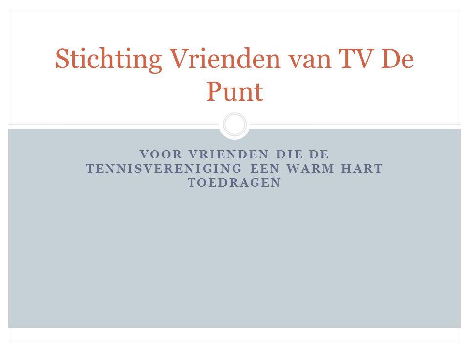 Stichting Vrienden van TV De Punt