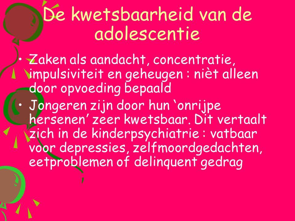 De kwetsbaarheid van de adolescentie