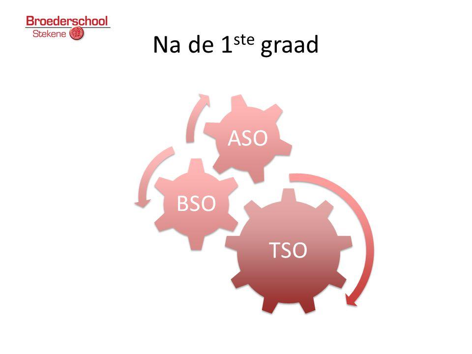 Na de 1ste graad TSO BSO ASO