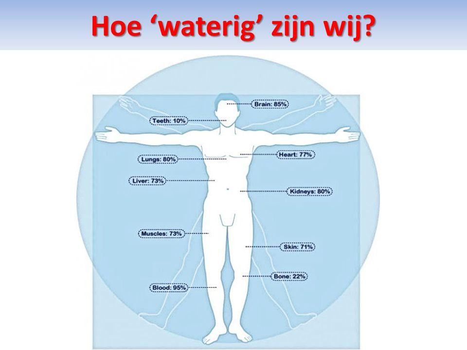 Hoe 'waterig' zijn wij