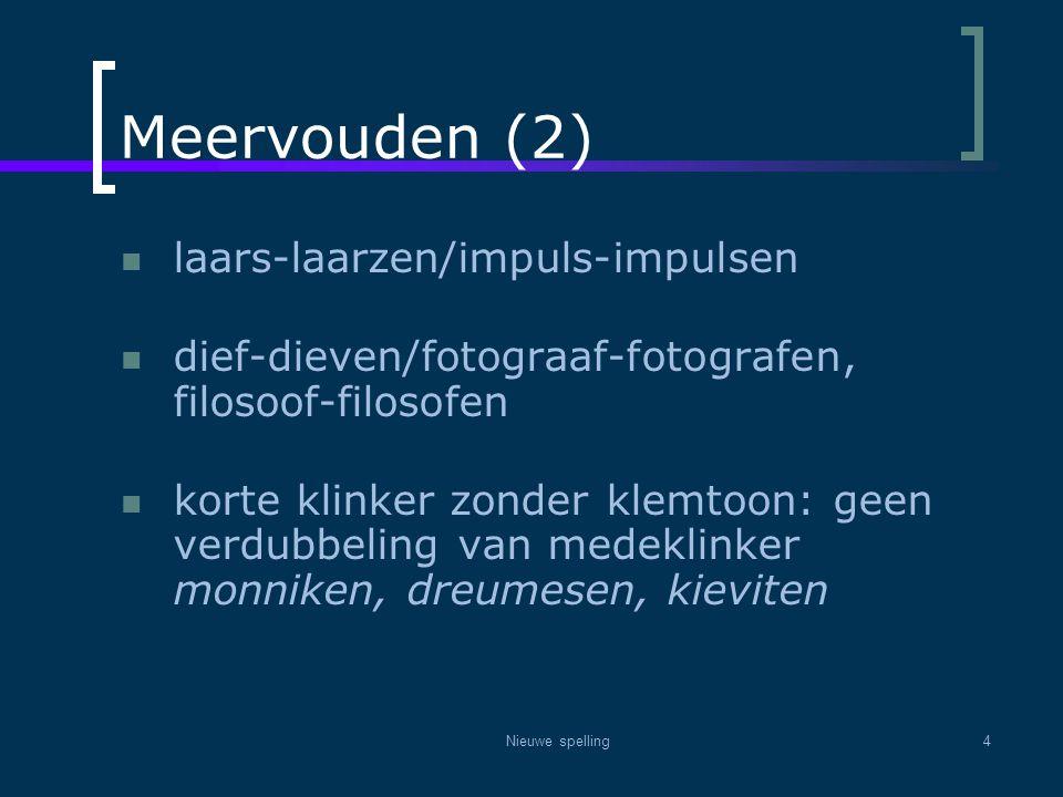 Meervouden (2) laars-laarzen/impuls-impulsen