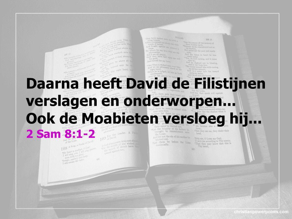 Daarna heeft David de Filistijnen verslagen en onderworpen