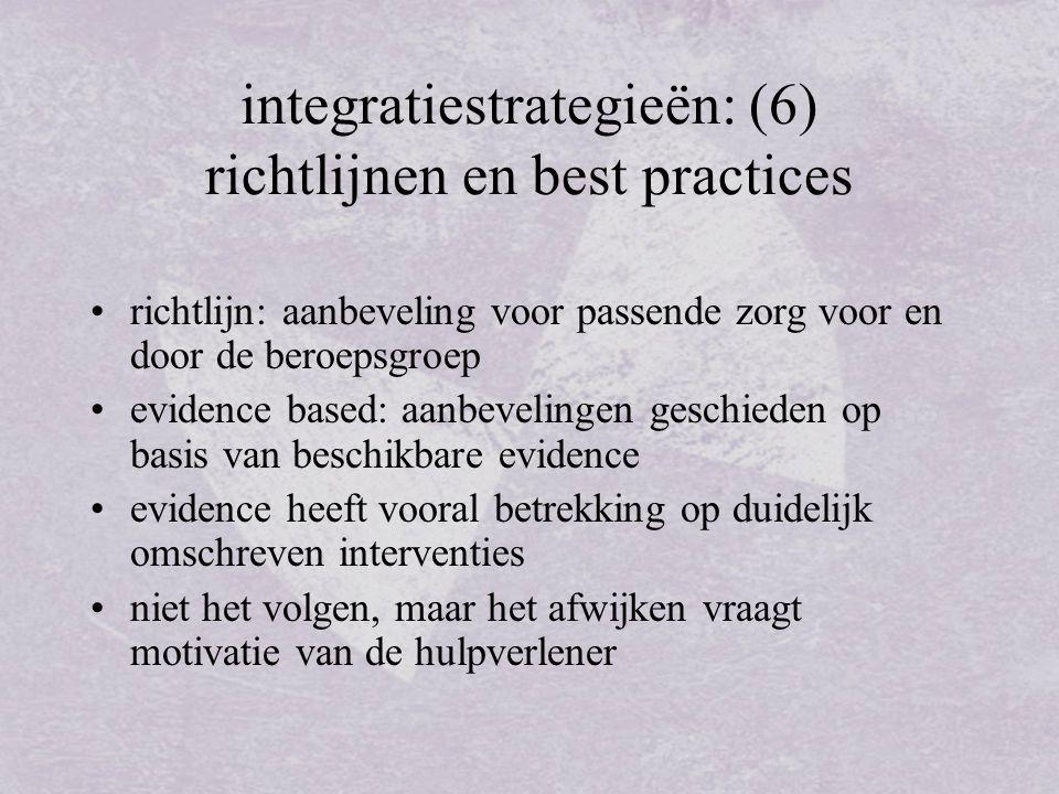 integratiestrategieën: (6) richtlijnen en best practices
