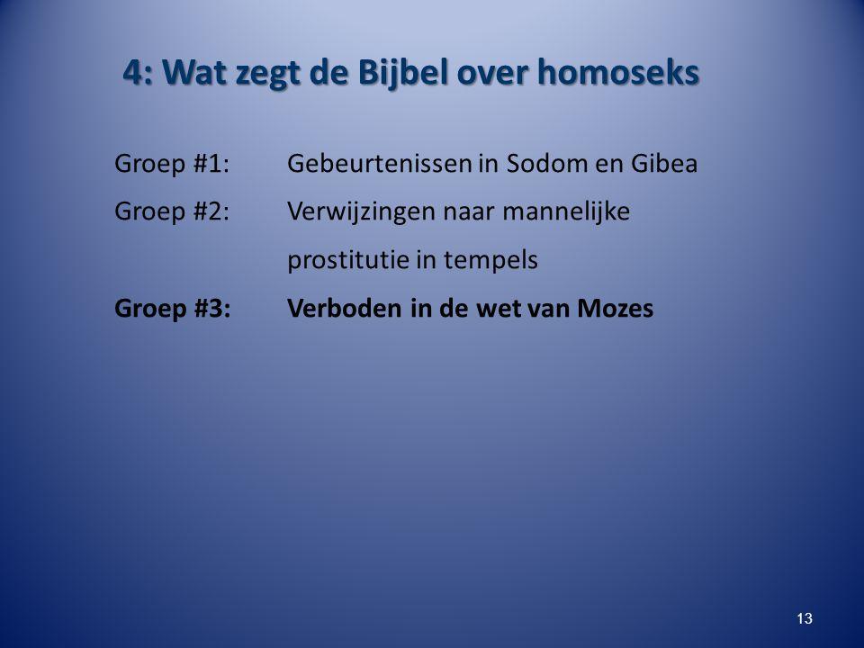 4: Wat zegt de Bijbel over homoseks