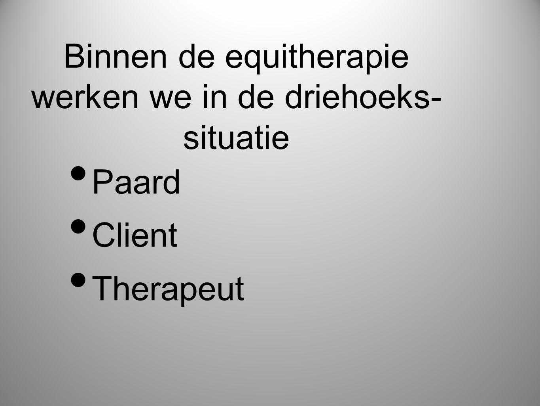 Binnen de equitherapie werken we in de driehoeks-situatie