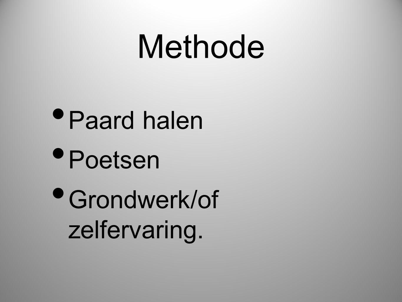 Methode Paard halen Poetsen Grondwerk/of zelfervaring.