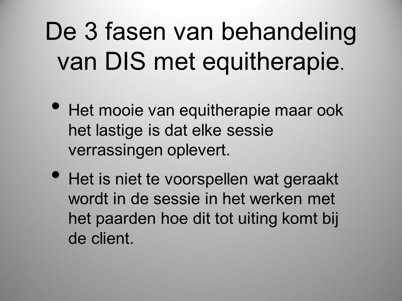 De 3 fasen van behandeling van DIS met equitherapie.
