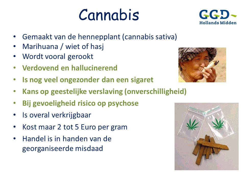 Cannabis Gemaakt van de hennepplant (cannabis sativa)