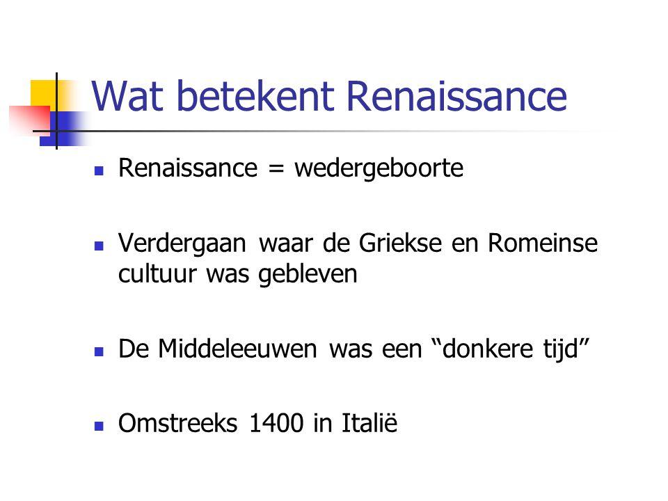 Wat betekent Renaissance