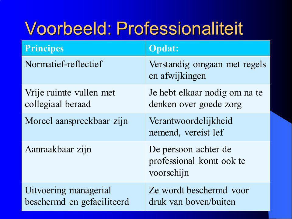 Voorbeeld: Professionaliteit