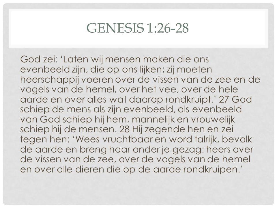 Genesis 1:26-28