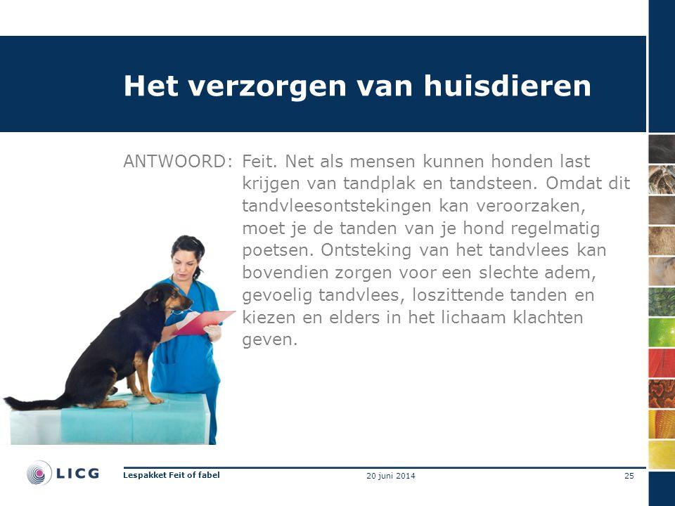 Het verzorgen van huisdieren