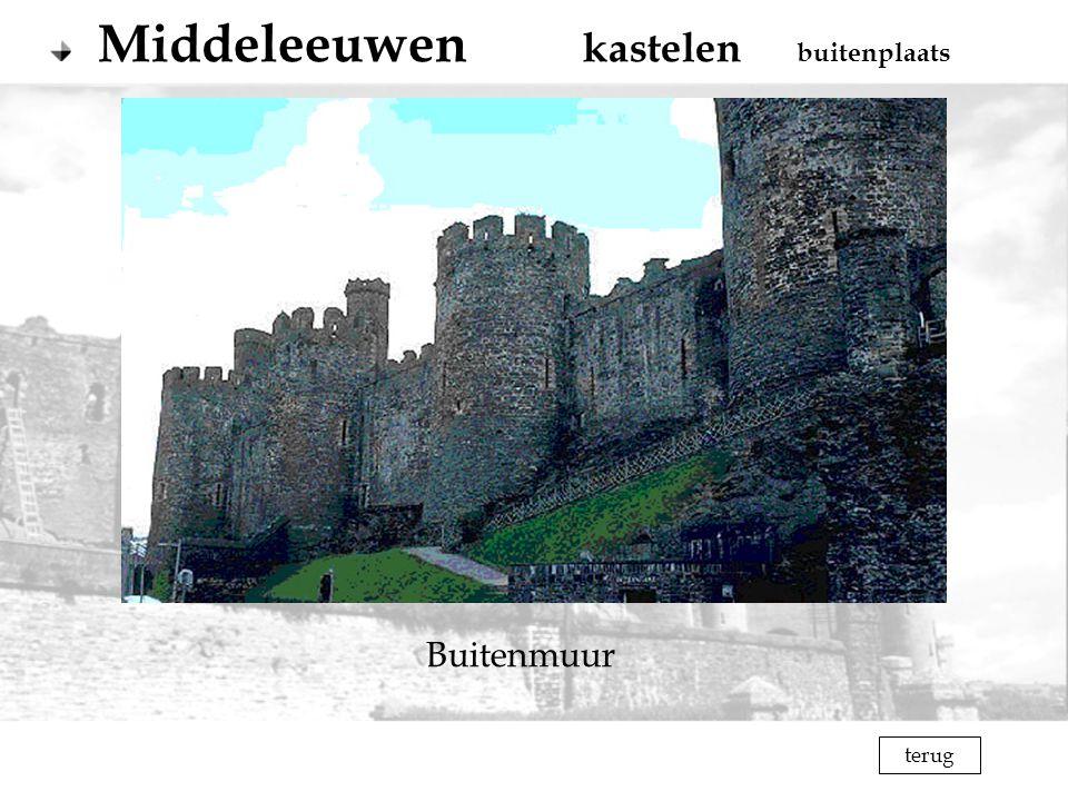 Middeleeuwen kastelen buitenplaats