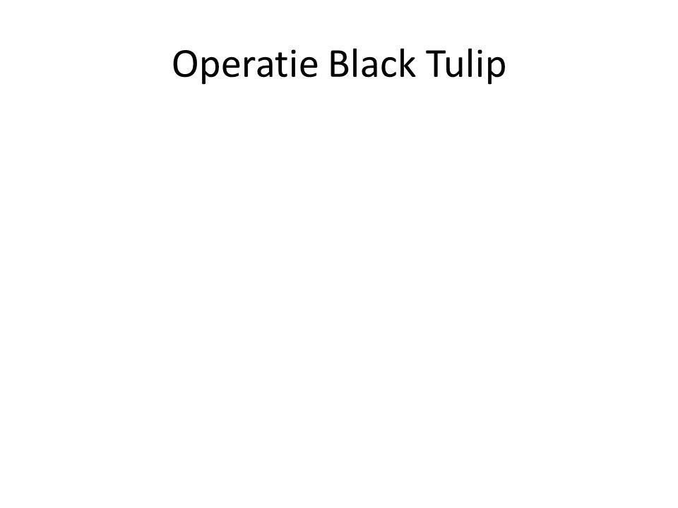 Operatie Black Tulip