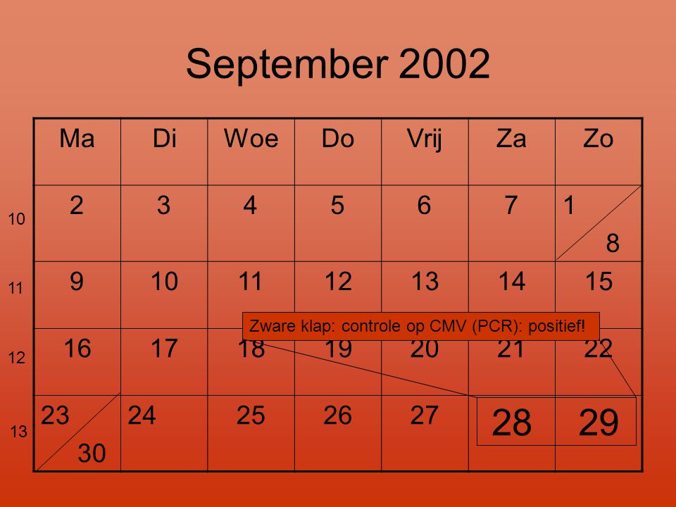 September 2002 28 29 Ma Di Woe Do Vrij Za Zo 2 3 4 5 6 7 1 8 9 10 11