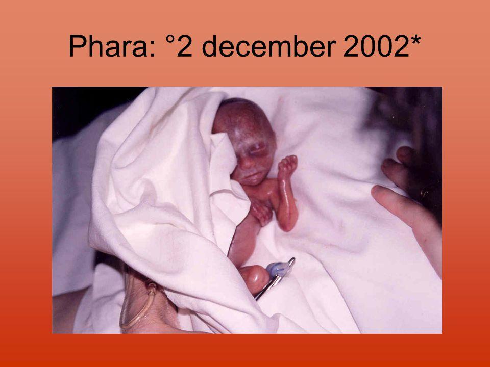 Phara: °2 december 2002*