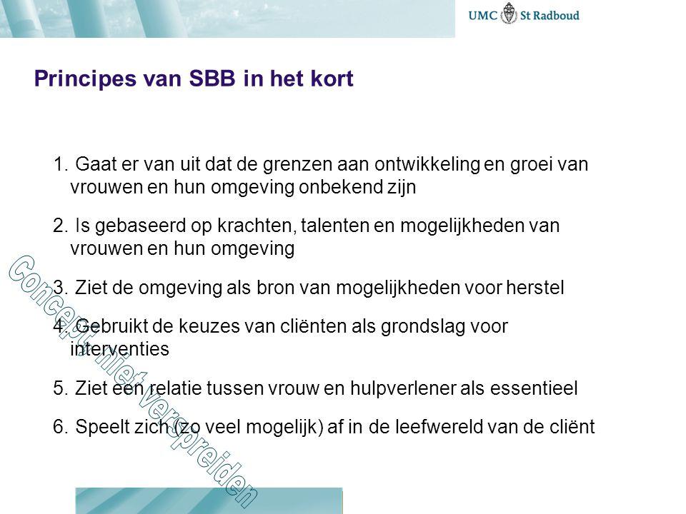 Principes van SBB in het kort