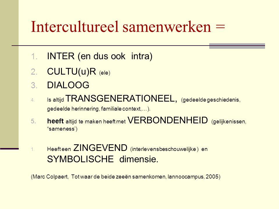 Intercultureel samenwerken =