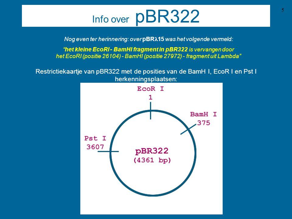 Nog even ter herinnering: over pBRl15 was het volgende vermeld:
