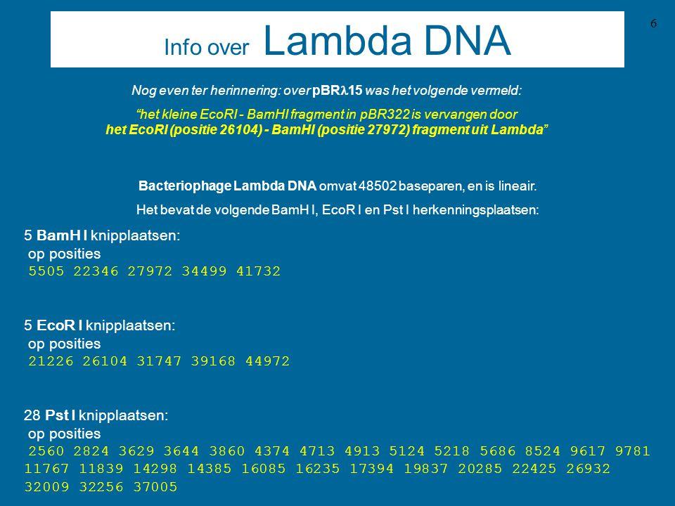 Info over Lambda DNA Nog even ter herinnering: over pBRl15 was het volgende vermeld: