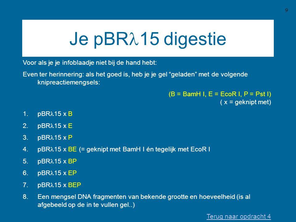 Je pBRl15 digestie Voor als je je infoblaadje niet bij de hand hebt: