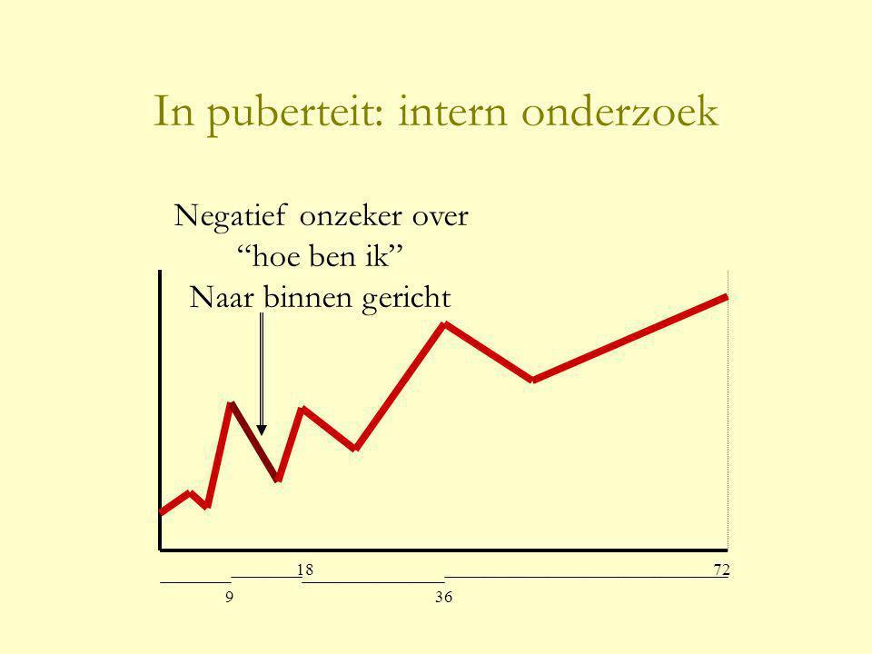 In puberteit: intern onderzoek
