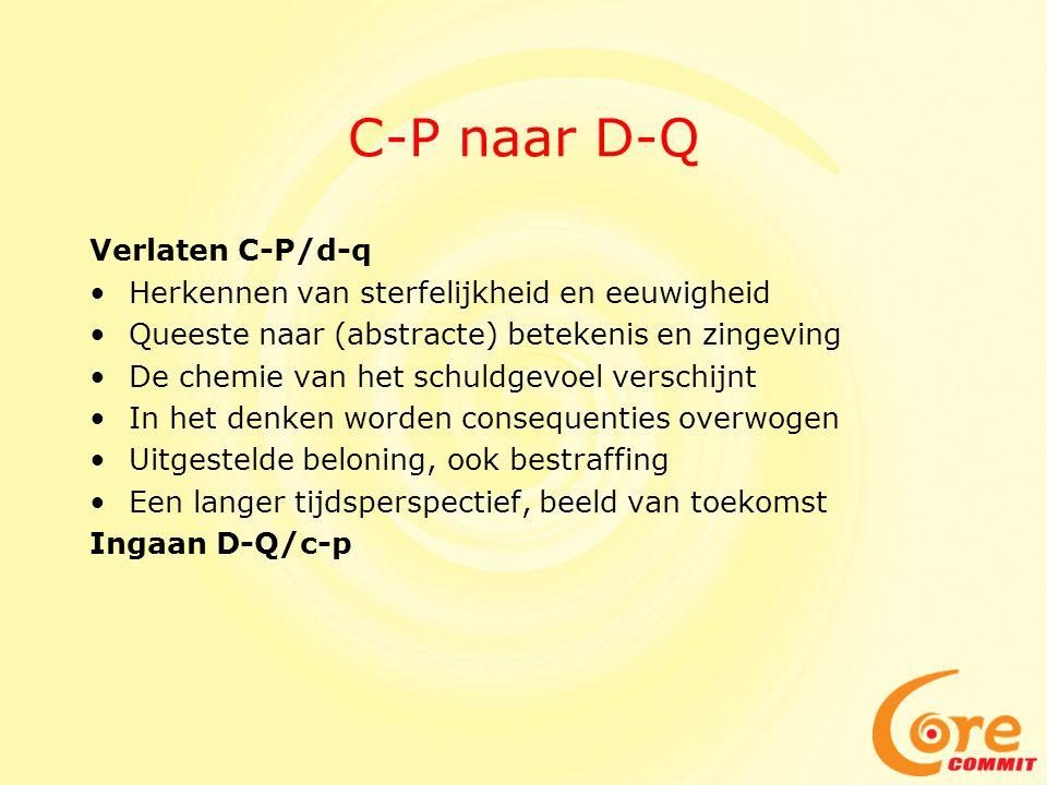 C-P naar D-Q Verlaten C-P/d-q
