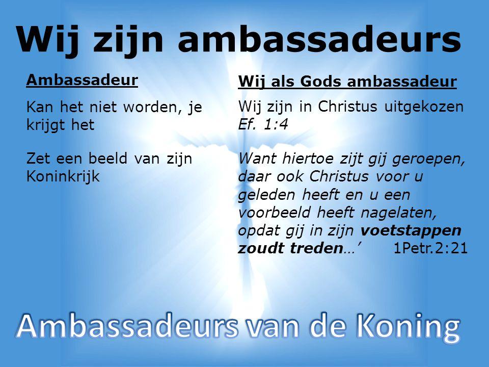 Ambassadeurs van de Koning
