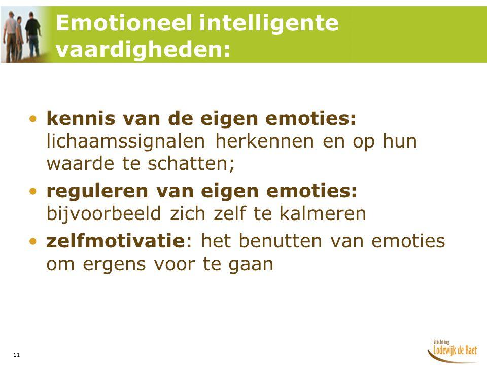 Emotioneel intelligente vaardigheden: