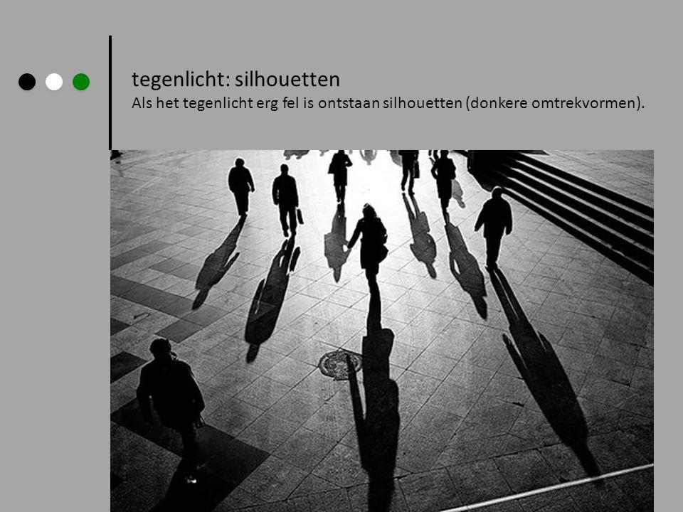 tegenlicht: silhouetten