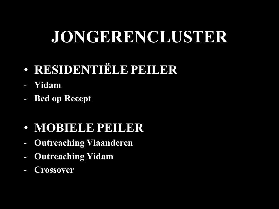 JONGERENCLUSTER RESIDENTIËLE PEILER MOBIELE PEILER Yidam Bed op Recept