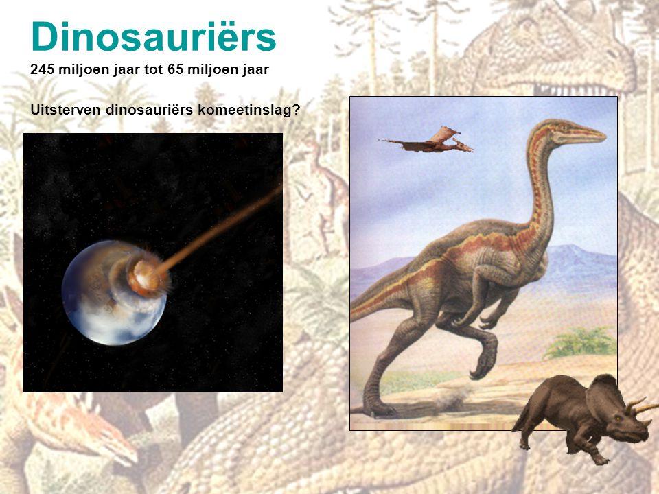 Dinosauriërs 245 miljoen jaar tot 65 miljoen jaar
