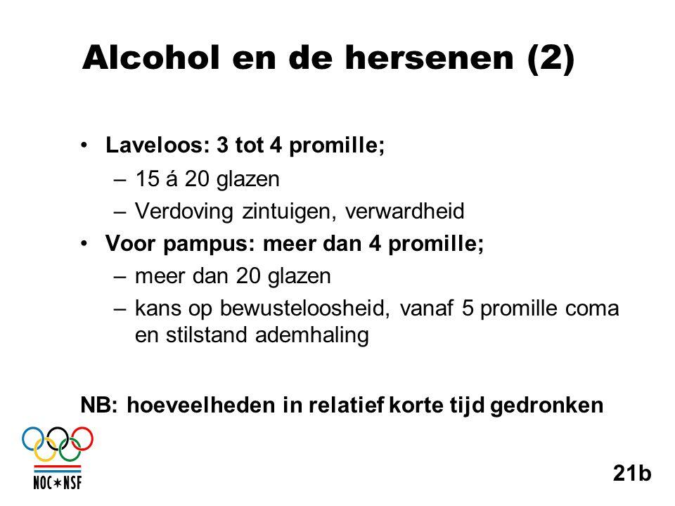 Alcohol en de hersenen (2)