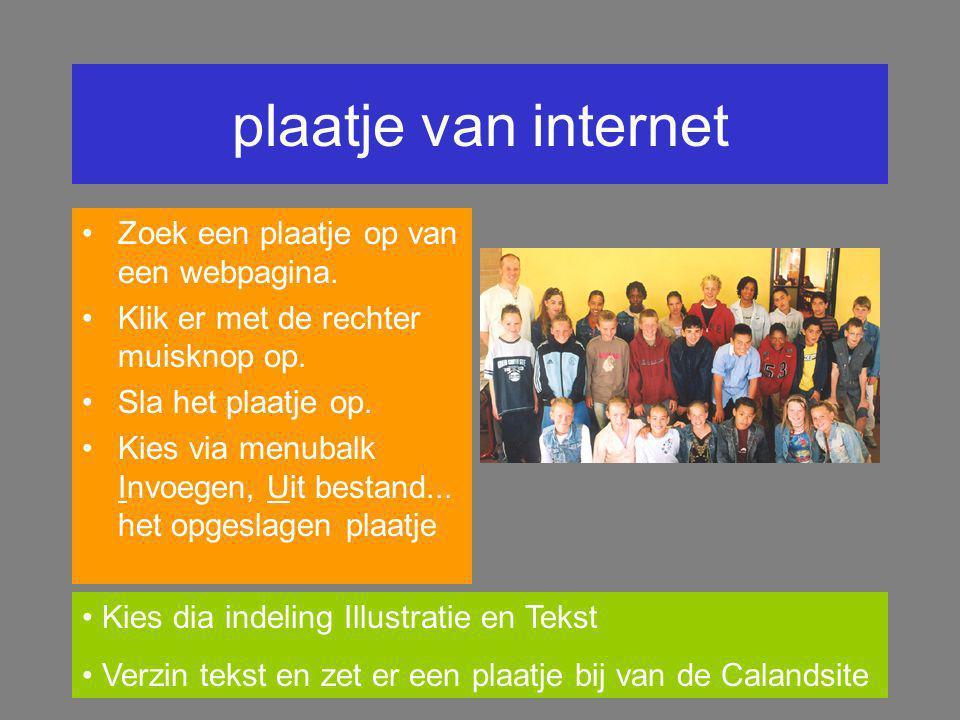 plaatje van internet Zoek een plaatje op van een webpagina.