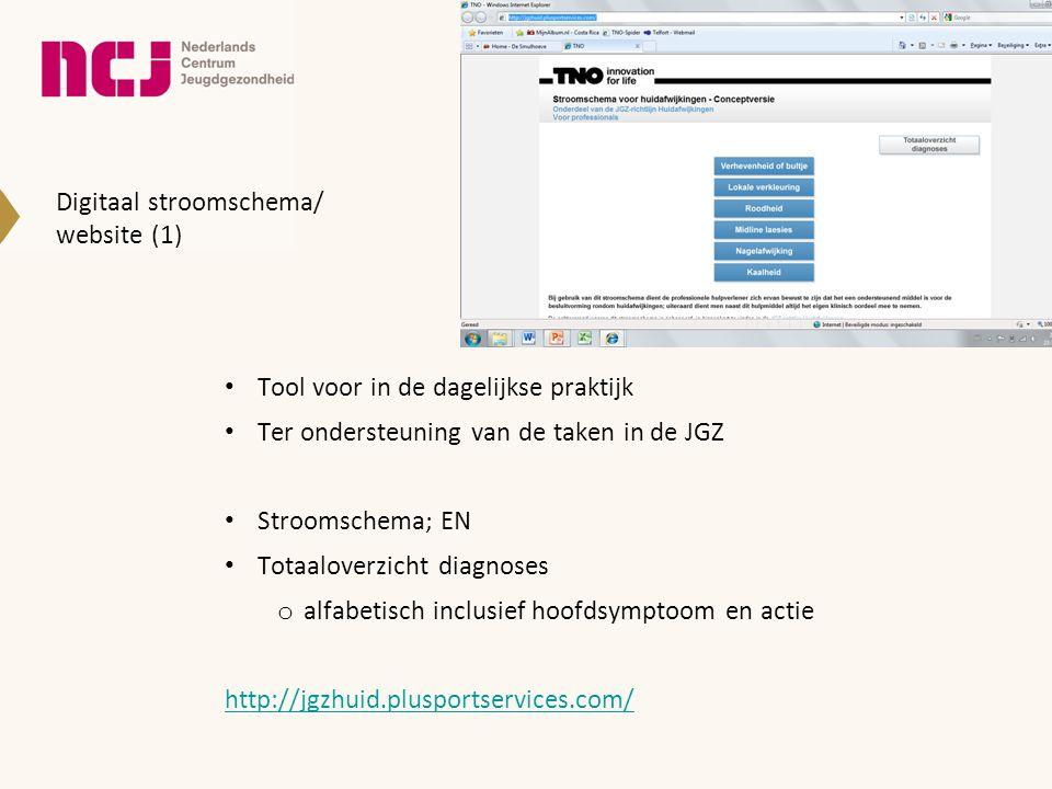 Digitaal stroomschema/ website (1)