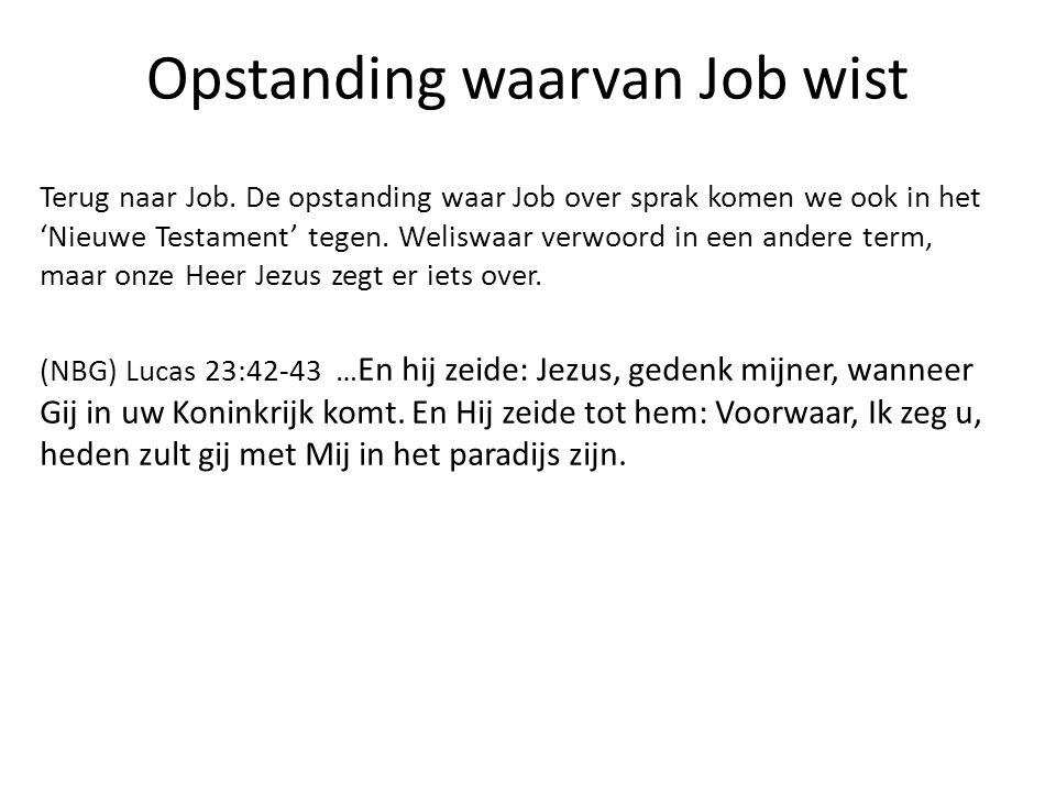 Opstanding waarvan Job wist