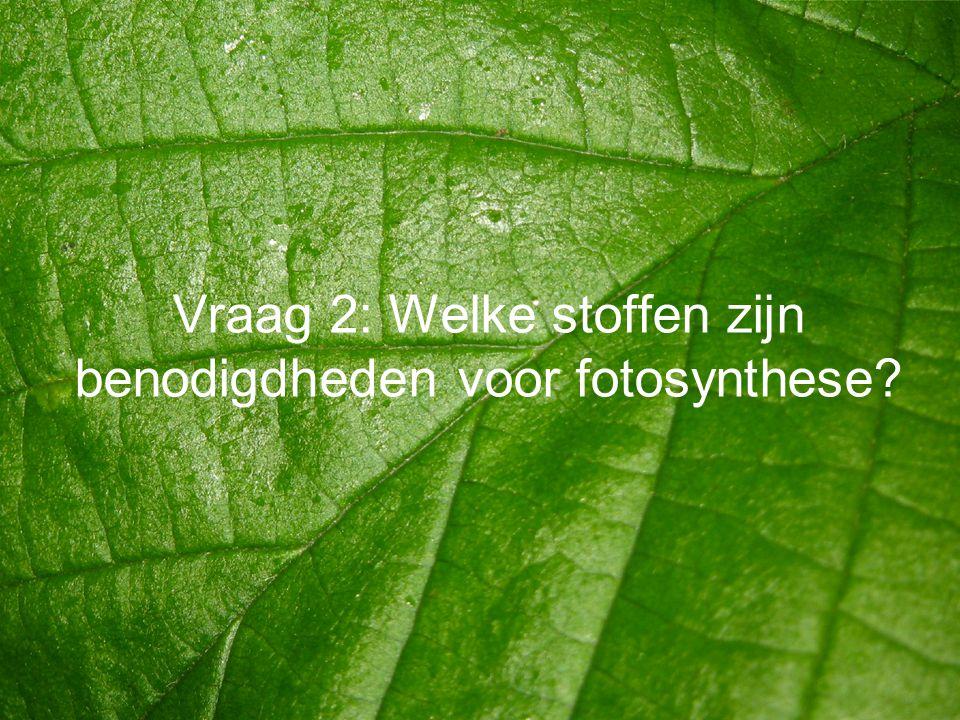 Vraag 2: Welke stoffen zijn benodigdheden voor fotosynthese