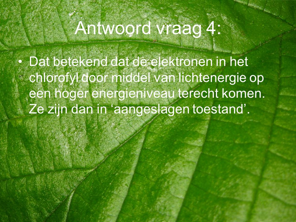 Antwoord vraag 4: