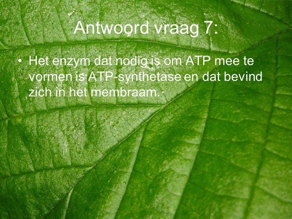 Antwoord vraag 7: Het enzym dat nodig is om ATP mee te vormen is ATP-synthetase en dat bevind zich in het membraam.