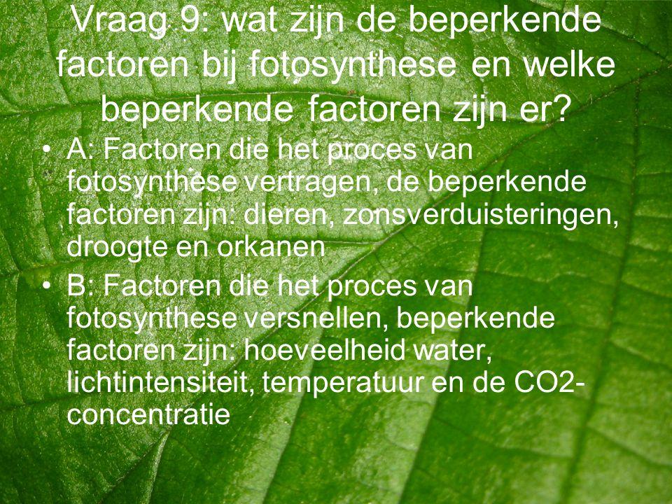 Vraag 9: wat zijn de beperkende factoren bij fotosynthese en welke beperkende factoren zijn er